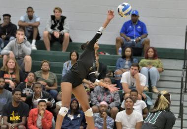 August 31, 2019 - Women's Volleyball vs. Pitt